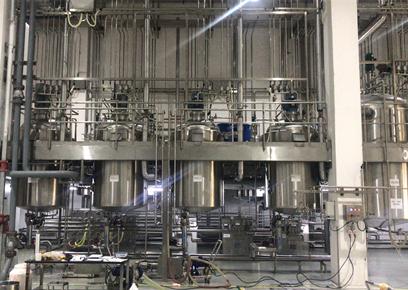 江蘇鎮江配液罐安裝工程案例