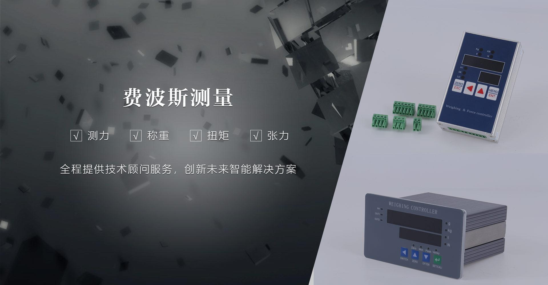 测力传感器,扭力传感器,称重传感器厂家