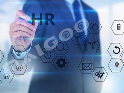 人力資源服務有限公司-智能算薪平臺