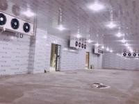 工廠速凍冷庫