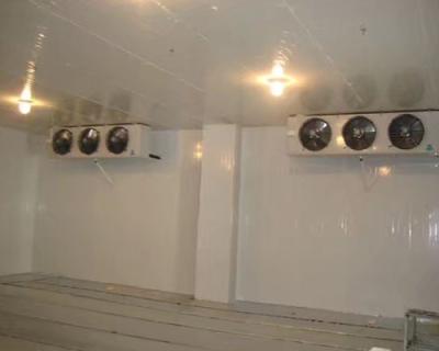福州海鮮冷庫