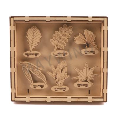 手工拼图植物标本盒