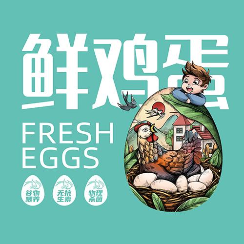燕錦來-鮮雞蛋