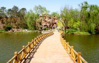 木橋實用案例