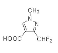 3-(二氟甲基)-1-甲基-1H-吡唑-4- 羧酸3-(Difluoro methyl)-1-methyl-1H-pyrazole-4-carb oxylicacid
