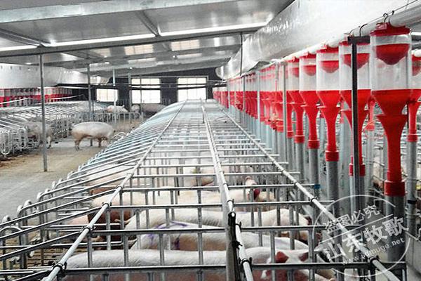 猪场节水神器--牧歌水位控制器