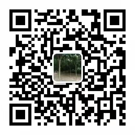 叢生臘梅價格黃山欒樹價格
