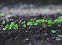 重慶土壤檢測