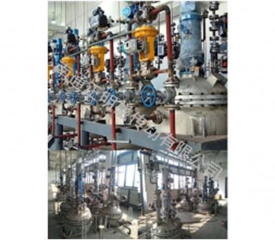 高轉速加氫釜:張家港某化工廠(上市公司)