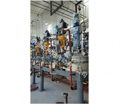 無錫某化工裝備有限公司(配套CJD型磁傳動)