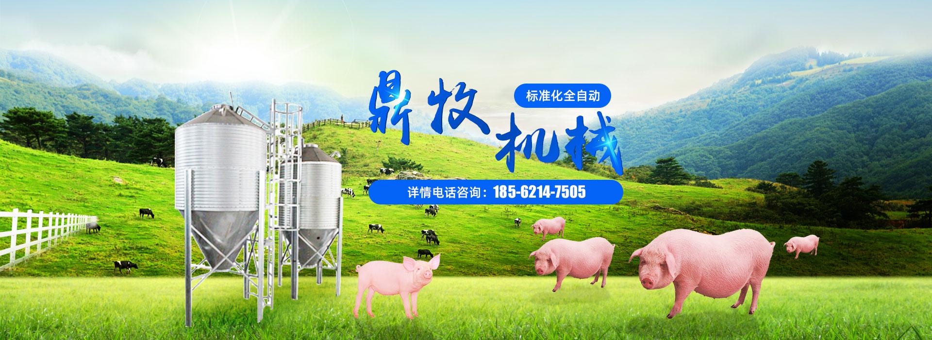 猪场养猪设备