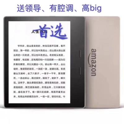 Kindle oasis (8G32G)