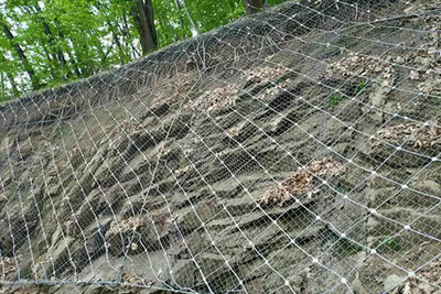 邊坡主動防護網