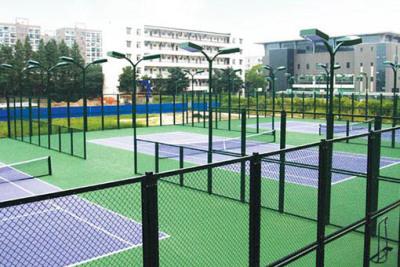 學校球場圍網
