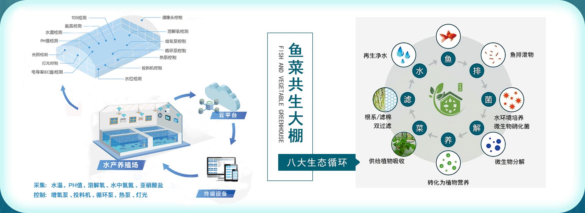 重庆磁创科技有限公司-智慧水产养殖设备