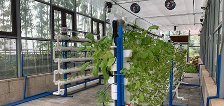 传统水产养殖与智慧水产养殖有什么区别呢?
