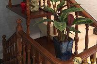南京實木樓梯花架