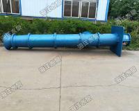 單基礎軸流泵生產廠家