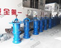 開敞式軸流泵廠家