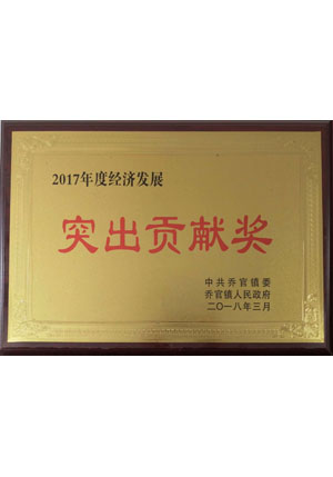 2017突出貢獻獎