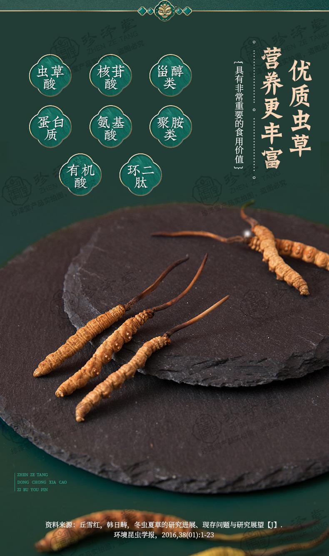 西藏那曲冬虫夏草