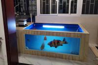 玻璃鋼魚缸