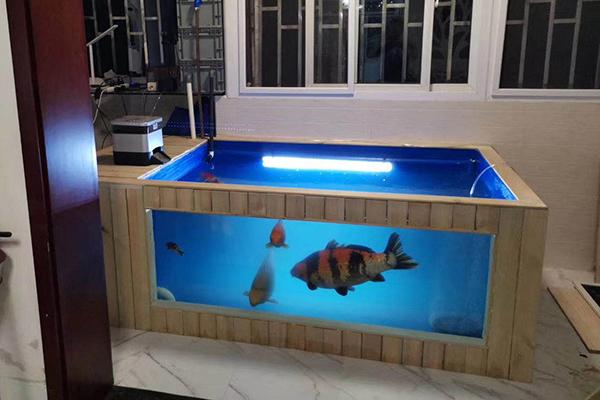 ?魚缸可以用材料制品進行制作嗎?