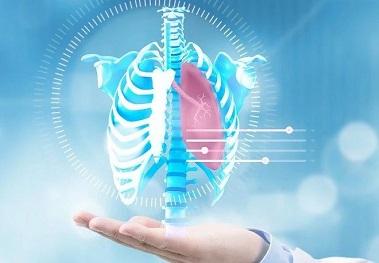 「青莲客户文章」TRIB3-EGFR相互作用促进肺癌进展并提供治疗靶点
