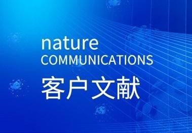 Nature Communication|TRIB3通過抑制FOXO1的降解和增強SOX2轉錄促進乳腺癌的干性