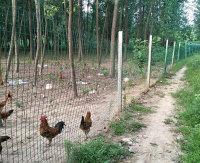 養殖場護欄網