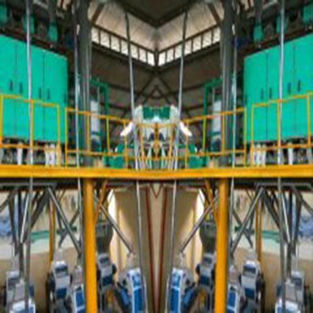 日生產40噸面粉機械設備