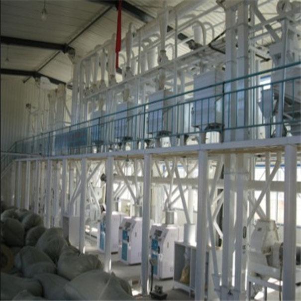 日雷竞技App玉米80吨联产生产线