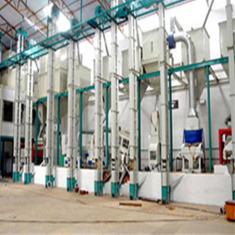 燕麦藜麦小米杂粮加工设备