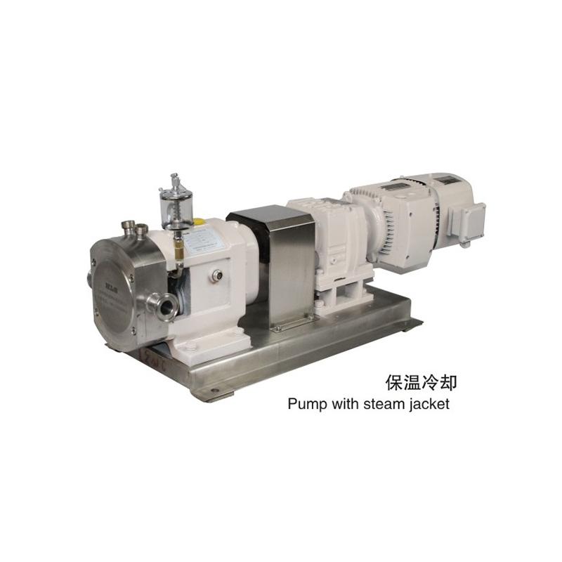 轉子泵廠家:很多人不清楚,轉子泵原先有那麼多種多樣