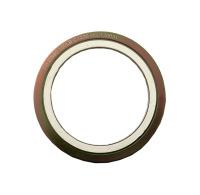 金属缠绕垫片(带外环)