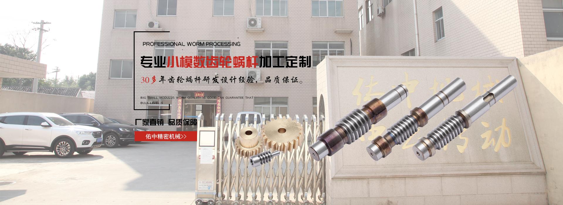 小模數齒輪,蝸(wo)輪蝸(wo)桿加工,尼龍齒輪廠家