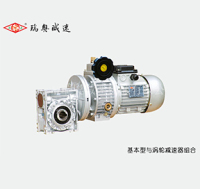 NMRV030-040雙渦輪減速器