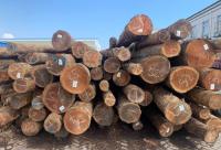 花旗原木和板材