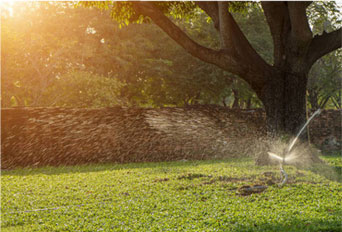 绿化喷头-滴灌管