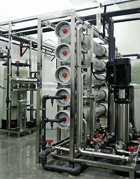 蘭州城關區食品廠10T/H雙級RO反滲透純水設備