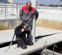 污水厂水下挂绳打捞