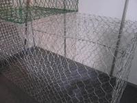 哈爾濱籠網