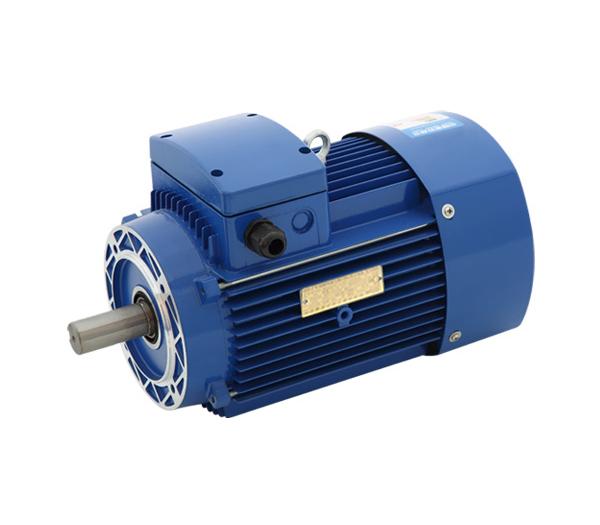 金華水泵專用電機