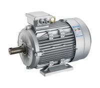 YE2鋁合金系列三相異步電動機