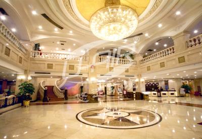 上海王朝大酒店項目