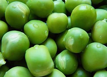 上海甜青豆粒