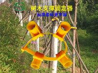 樹支支撐固定器