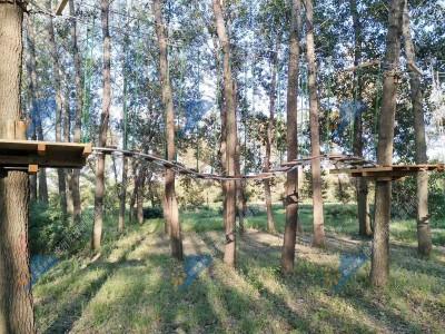 丛林探险拓展设施-飞跃丛林探险设施