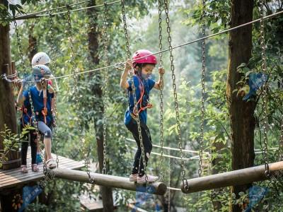 丛林穿越设施-树上探险拓展设备