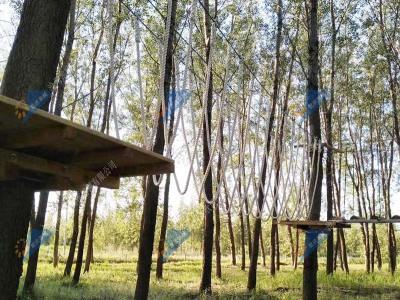 飞跃丛林探险器械-丛林拓展器械
